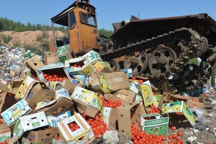 утилизация продуктов питания с истекшим сроком годности