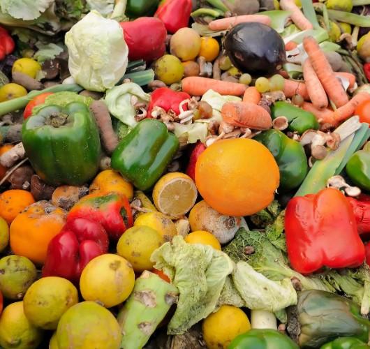 Утилизация продуктов питания